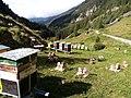 Station d'élevage SAR d'Apis mellifera Carnica à Toutes (Valais).jpg
