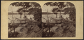 Steamer Zork, Lewiston, N.Y, from Robert N. Dennis collection of stereoscopic views.png