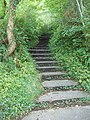 Steps on footpath below Babbacombe Downs - geograph.org.uk - 956604.jpg