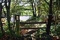Stile on the 1066 Walk, Powdermill Lane - geograph.org.uk - 1576654.jpg