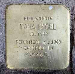 Photo of Tana Nagel brass plaque