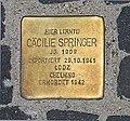 Stolperstein Unter den Linden 6 (Mitte) Cäcilie Springer.jpg