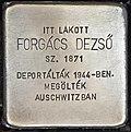 Stolperstein für Dezsö Forgacs (Miskolc).jpg