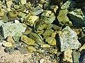 Stones in the Burn, Knockendoch - geograph.org.uk - 397597.jpg