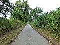 Straight Road - geograph.org.uk - 1530515.jpg