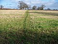 Straight across the field - geograph.org.uk - 1618072.jpg