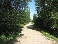 Strazdiškės, Lithuania - panoramio (2).jpg
