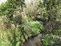 Stream at Tregidden - geograph.org.uk - 411872.jpg