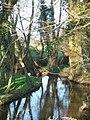 Stream at the Edge of Hamptworth Golf Club - geograph.org.uk - 388337.jpg
