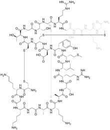 Structural formula of ziconotide.png