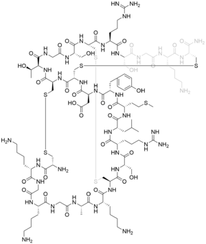 Ziconotide - Image: Structural formula of ziconotide