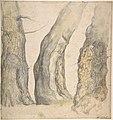 Study of Three Old Gnarled Trees MET DP802349.jpg
