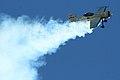 Sukhoi Su-31M OK-HXB (8110311207).jpg