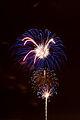 Summerfest 2008 fireworks 7096.jpg