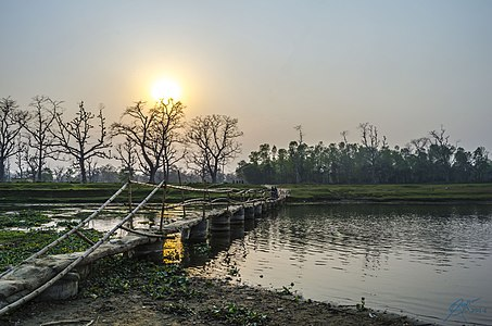 Sunset at Chitwan National Park.jpg