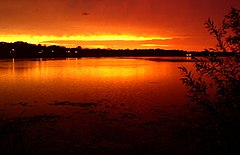 Sunset over Lake Phalen.jpg