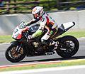 Superbike 37 Stefano Mesa leaning Road America 2015.jpg