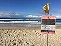 Surfers Paradise Beach in winter 02.JPG