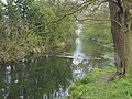 Swift Valley Nature Reserve, old canal arm (6).jpg