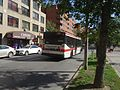 TTC bus on The Esplanade, 2016-09-20 (2) (29816022315).jpg