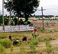 Tajikistan- 1999 (7977079343).jpg