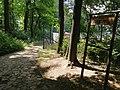 Tarnowskie Góry Park Miejski Aleja Pod Wieżę.jpg