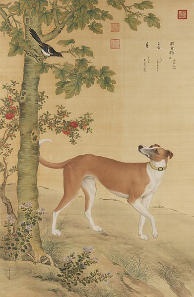 File:Ten Prized Dogs 08.jpg