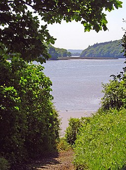 The Eastern Cleddau from Slebech Park - geograph.org.uk - 800454