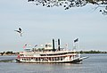The Natchez (2965404550).jpg