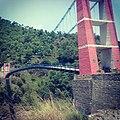The Pink Bridge.jpg