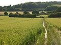 The Ridgeway, Bledlow - geograph.org.uk - 892872.jpg