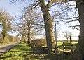 The Road away from Hucknall Farm - geograph.org.uk - 328580.jpg