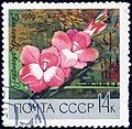 The Soviet Union 1969 CPA 3755 stamp (Gladiolus Ural Girl) cancelled.jpg