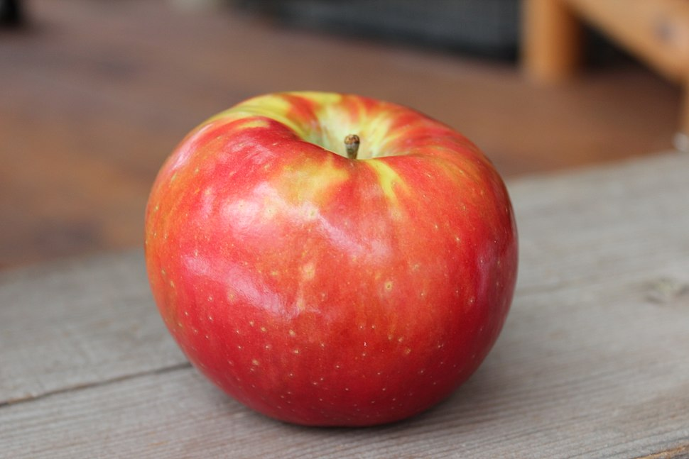 The SugarBee Apple now grown in Washington State