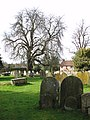 The church of St Andrew in Scole - churchyard - geograph.org.uk - 1766125.jpg