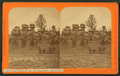 The happy family, Manitou Park, by Thurlow, J., 1831-1878.png