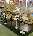 The skull of Sperm whale.jpg