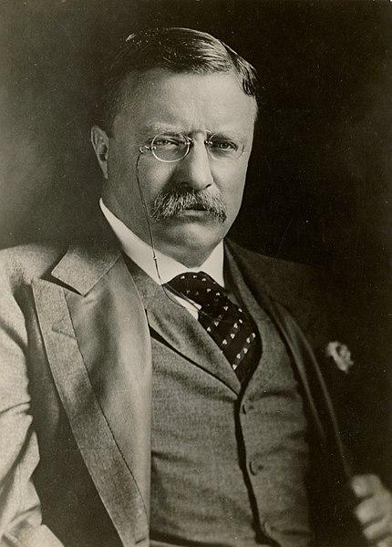 Theodore Roosevelt | Image via Wikimedia.org