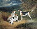 Three Hounds in a Landscape,.jpg
