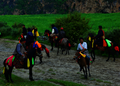 Tibetan Horse Racers Manigango.png