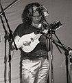 Tony Wilson, Essex 1981.jpg