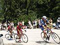 Tour de France 2010 - panoramio (9).jpg
