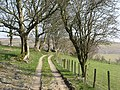 Track, Blaen-heath - geograph.org.uk - 436147.jpg