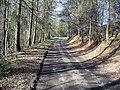 Track alongside Arn Gill - geograph.org.uk - 1243985.jpg