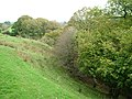 Trees line Hebblethwaite Hall Gill - geograph.org.uk - 1528474.jpg