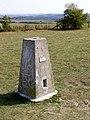 Triangulation pillar at Farley Mount - geograph.org.uk - 236887.jpg