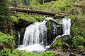 Triberg Waterfall 2.JPG