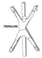 TripaliumCropped.png