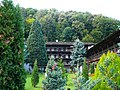 Troyan Monastery E1.jpg