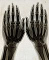 Two hands, viewed through x-ray. Photoprint from radiograph Wellcome V0029554.jpg